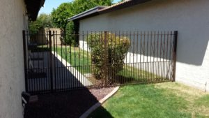 Dog Yard Fence and Gate